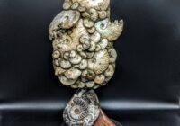 Ammonite Fossil Sculpture