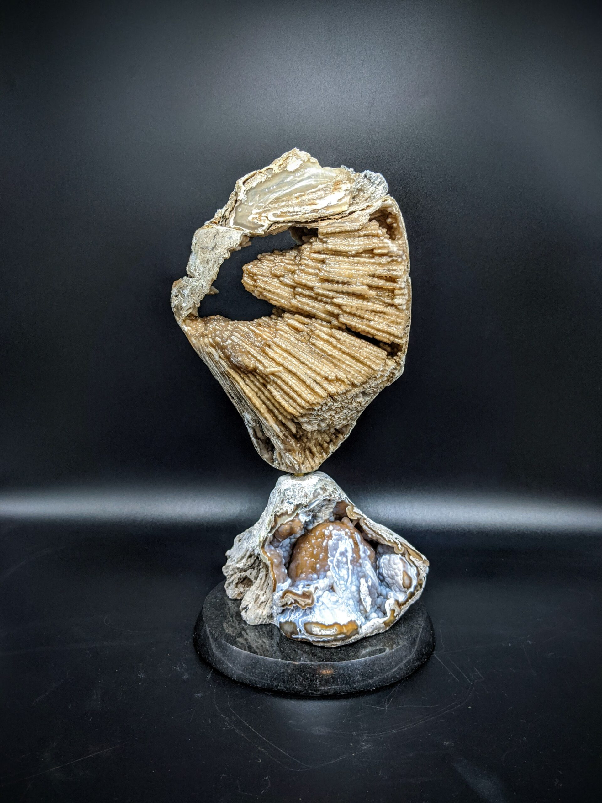 Agatized Coral sculpture